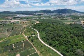Land for sale in Si Racha, Chonburi