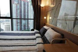 ขายหรือให้เช่าคอนโด ไลฟ์ สุขุมวิท 48  1 ห้องนอน ใน พระโขนง, คลองเตย ใกล้  BTS พระโขนง