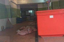 ขายอาคารพาณิชย์ 2 ห้องนอน ใน ลำปลาทิว, ลาดกระบัง