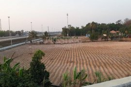 ขายที่ดิน ใน พัทยา, ชลบุรี