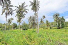 ขายที่ดิน ใน ตลิ่งงาม, เกาะสมุย