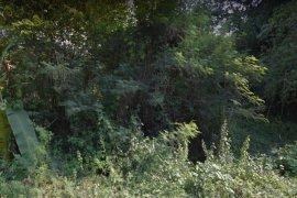 ขายที่ดิน ใน ชัยฤทธิ์, ไชโย
