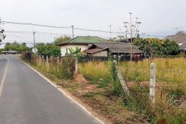 Land for sale in Wiang, Chiang Mai