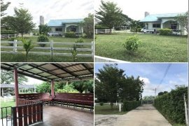 House for sale in Pak Chong, Ratchaburi