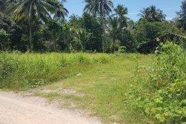 ขายที่ดิน ใน ลิปะน้อย, เกาะสมุย