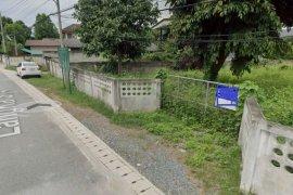 ขายที่ดิน ใน ฟ้าฮ่าม, เมืองเชียงใหม่