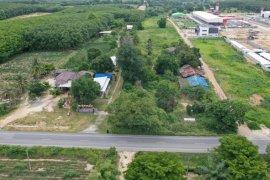 ขายที่ดิน ใน พนานิคม, นิคมพัฒนา