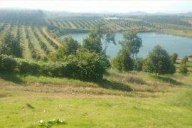 ขายที่ดิน ใน ท่าใหม่, จันทบุรี