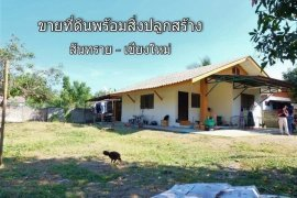 Land for Sale or Rent in San Sai, Chiang Mai
