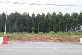 Land for sale in Pluak Daeng, Rayong