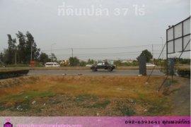 ที่ดิน สำหรับขาย ใน บางบัวทอง, นนทบุรี