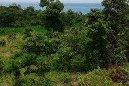 ที่ดิน สำหรับขาย ใน อ่างทอง, เกาะสมุย
