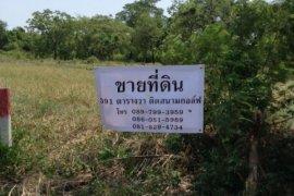 ที่ดิน สำหรับขาย ใน บางโฉลง, บางพลี