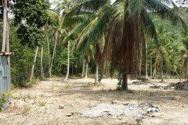 ที่ดิน สำหรับขาย ใน หาดบางรัก, เกาะสมุย