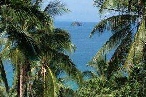 ที่ดิน สำหรับขาย ใน ตลิ่งงาม, เกาะสมุย