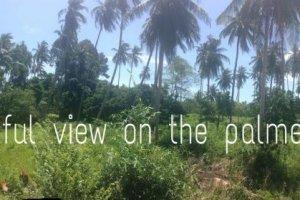 ที่ดิน สำหรับขาย ใน แม่น้ำ, เกาะสมุย