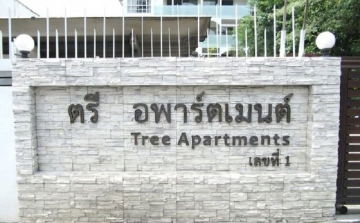 Tree Apartment 49