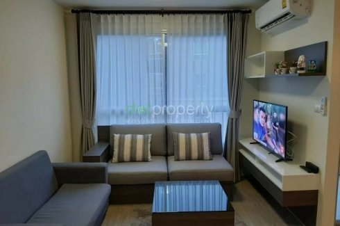 ขายหรือให้เช่าคอนโด ดีคอนโด พิงค์  1 ห้องนอน ใน ฟ้าฮ่าม, เมืองเชียงใหม่